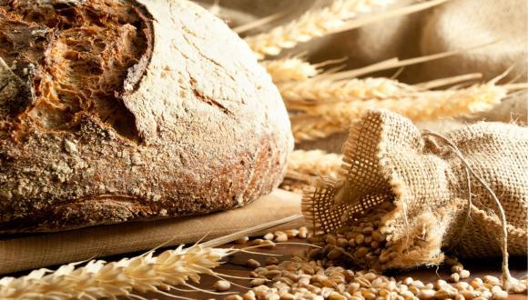 בזיעת אפך תאכל לחם